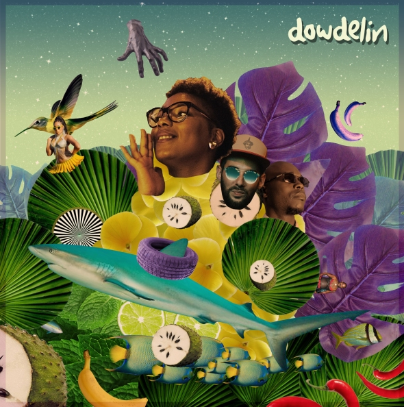 Dowdelin - Laissé Mwen