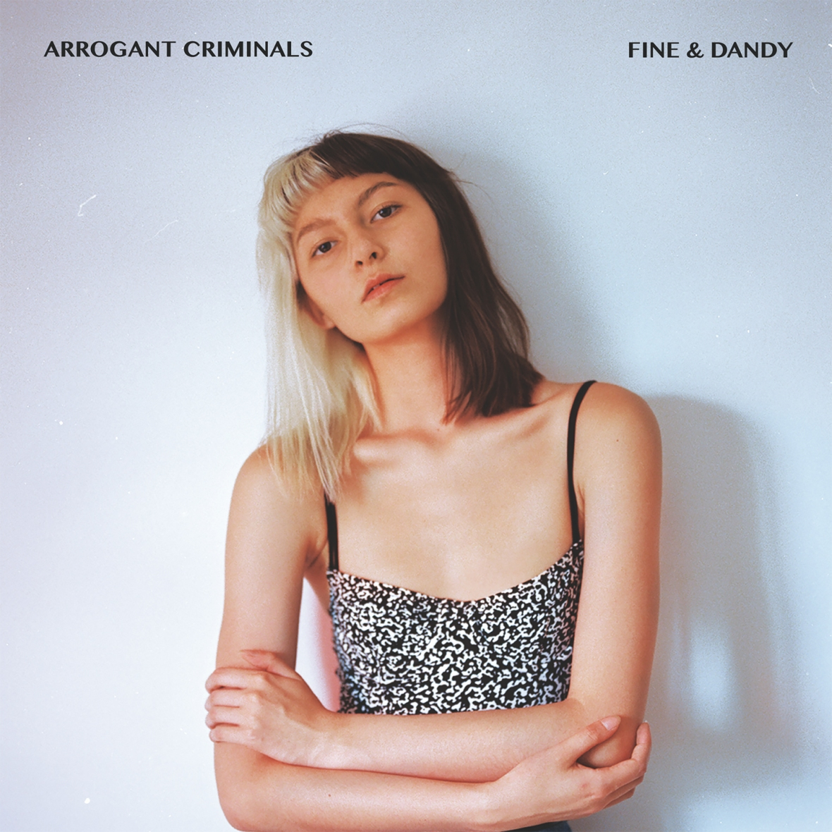 Arrogant Criminals - Fine and Dandy